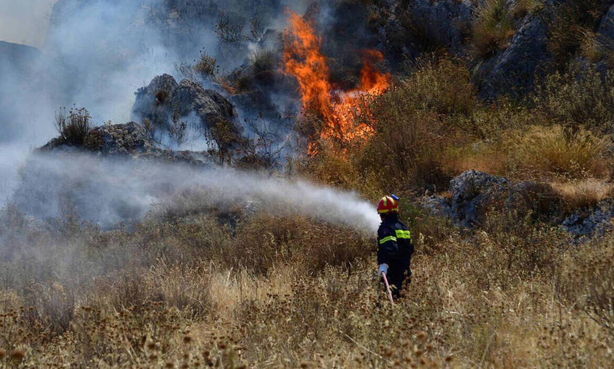 Τι προβλέπουν οι ποινές για τους εμπρηστές στην Κύπρο