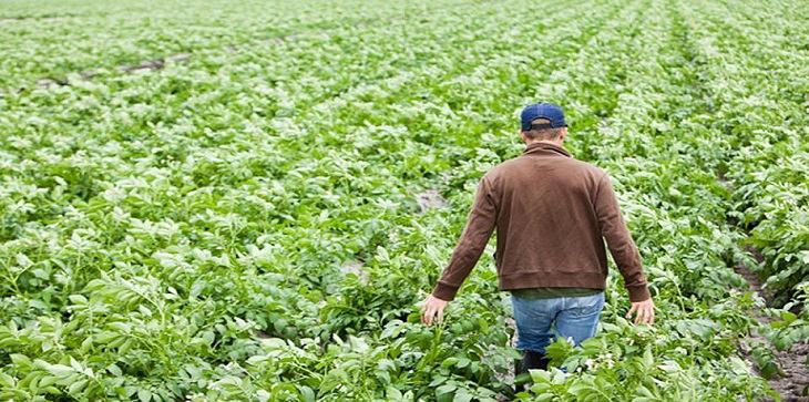 Η Κομισιόν δίνει €7,9 εκ στην Κύπρο για Πρόγ. Αγροτικής Ανάπτυξης
